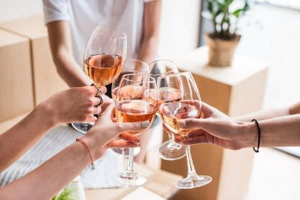 Women drinking wine at home.
