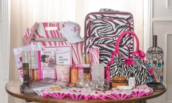 Pink Zebra Deluxe Business Kit - Be Your Own Boss With These Work-at-Home Business Opportunities