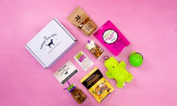 10 Ideas For Subscription Box Businesses That Can Be Run From Home