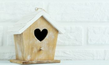 4 Reasons Working from Home is Perfect for Empty Nesters