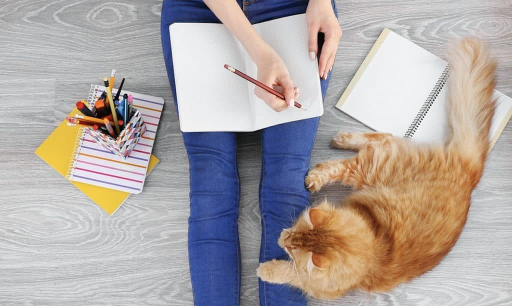woman writing with cat next to her - pet business ideas and jobs